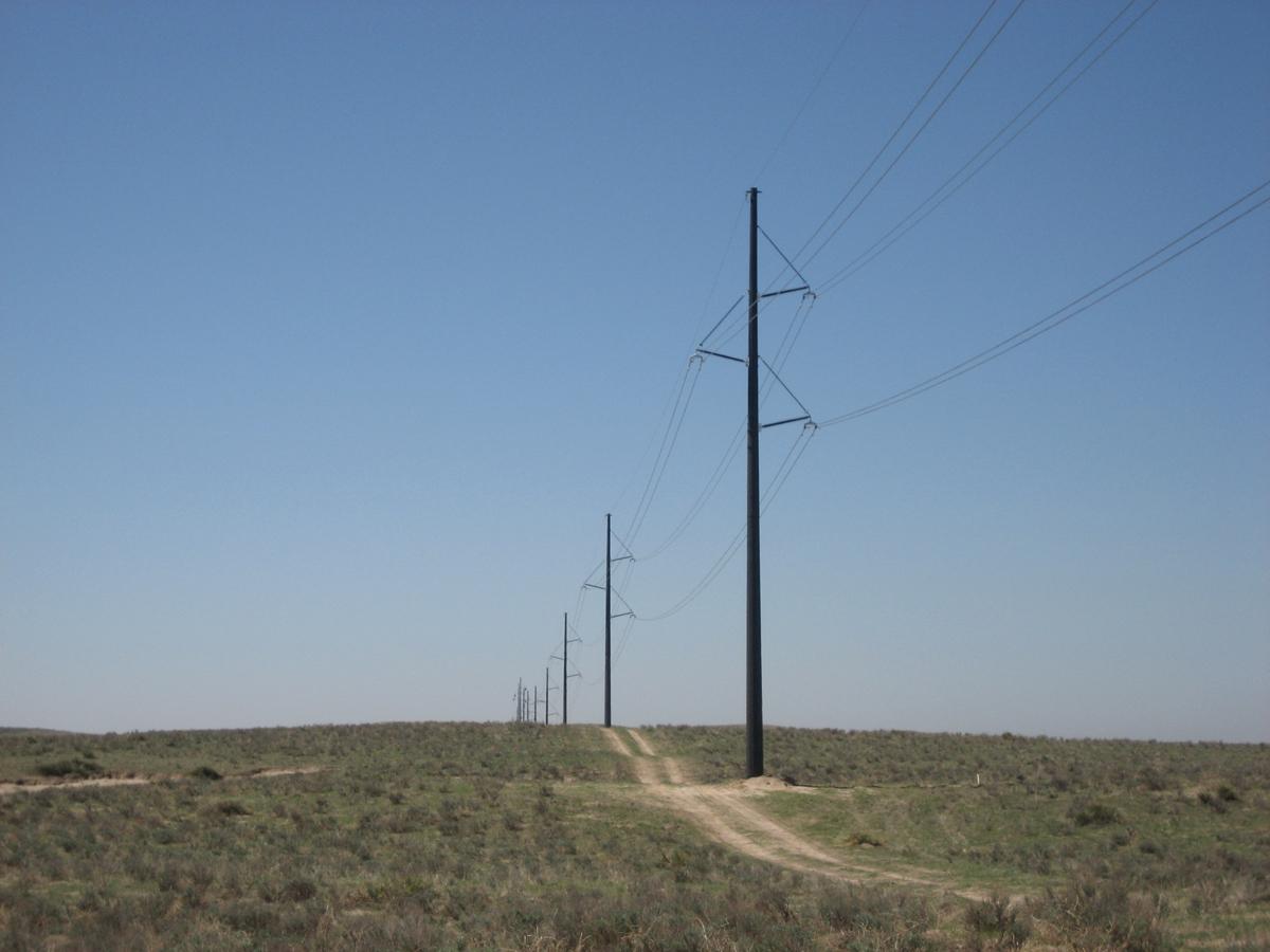 Peetz Interconnect and Transmission